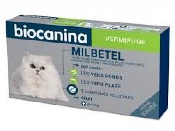 Milbetel chat