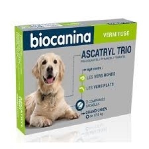 Ascatryl trio grand chien